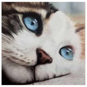 Paint Your Pets Course